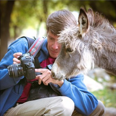 Приглашаем фотографов на бесплатный курс обучающих вебинаров