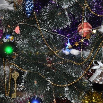 Новый год в доме сопровождаемого проживания «Новая Охта»